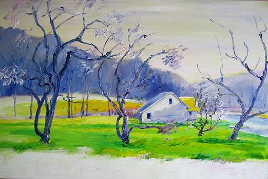 Orchard by Blanche Serban