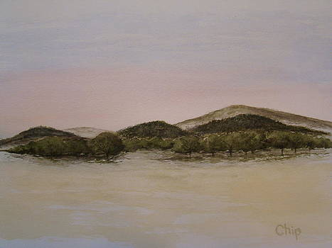Orchard by Chip Picott