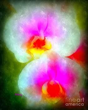 Patrick Witz - Orchid Art-1