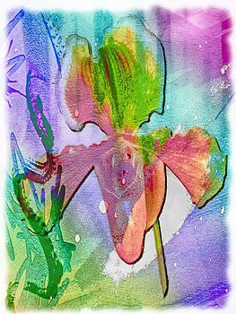 Orchid Burst by Jill Balsam