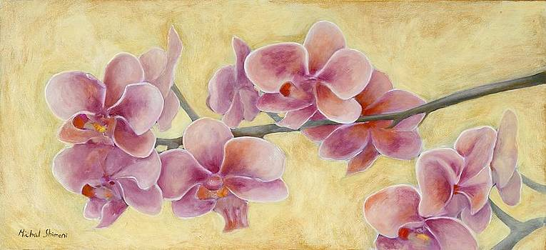 Orchid by Michal Shimoni