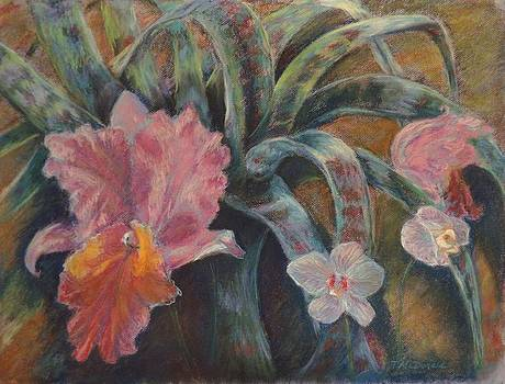 Orchid Rhapsody by Tricia Mcdonald