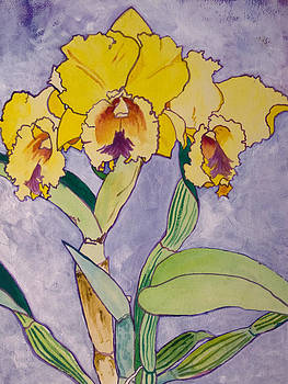 Orchid Study by Terry Holliday