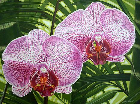 Orchid by Urszula Dudek
