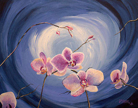 Orchid Whirlpool by Julia Robinson