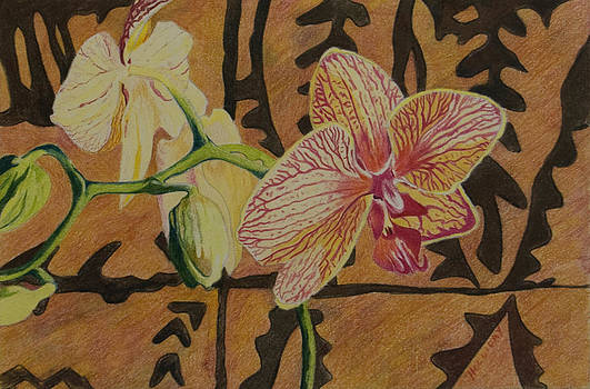 Orchid with Tapa by Terry Holliday