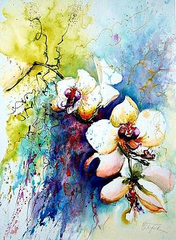 Christa Friedl - orchids