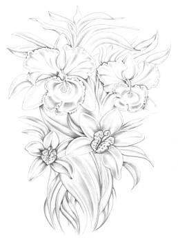 Orchids Fantasy in Black and White Symphony by Ismaele Alongi