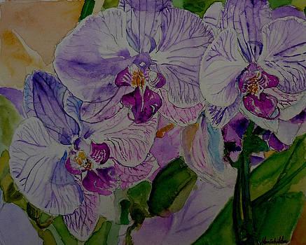 Orchids for Ma by Monishikha RoyChoudhury