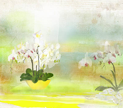 Orchids - Limited Edition 1 Of 10 by Gabriela Delgado
