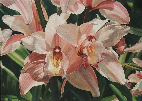 Orchids II by Cherie Sikking