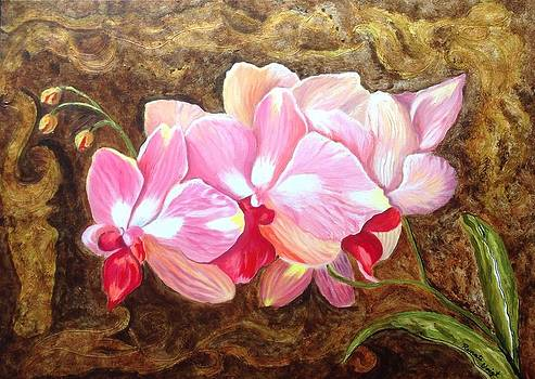 Orchids by Renate Voigt