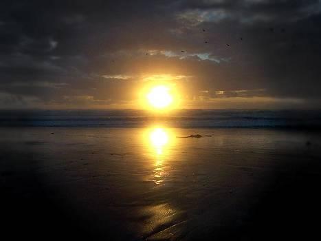 Deahn      Benware - Oregon Coast 15