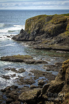 Oregon Coast by Carrie Cranwill