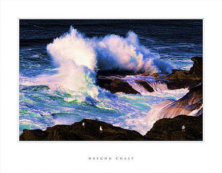 Oregon Coast by Denise Teague