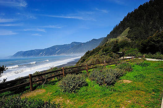 Oregon Coast by Don and Bonnie Fink