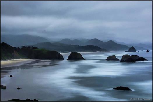 Erika Fawcett - Oregon Coast