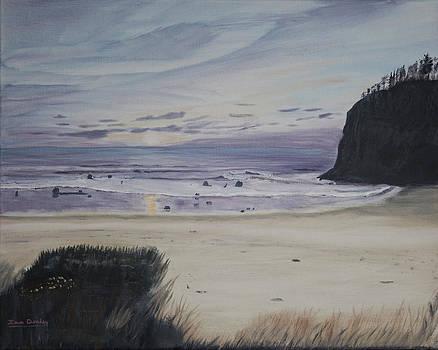 Ian Donley - Oregon Coast