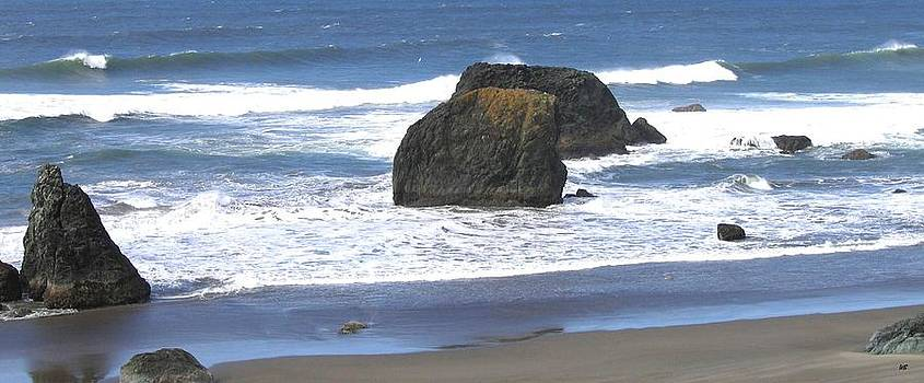 Oregon Coast Panorama by Will Borden