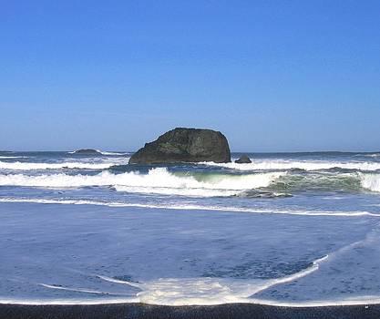 Oregon Coast Seascape by Will Borden
