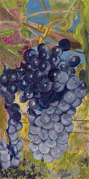 Oregon Grapes by Nick Vogel