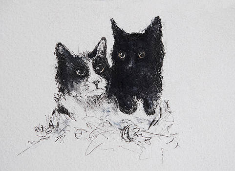 Oreo and Sasha by Rachel Christine Nowicki
