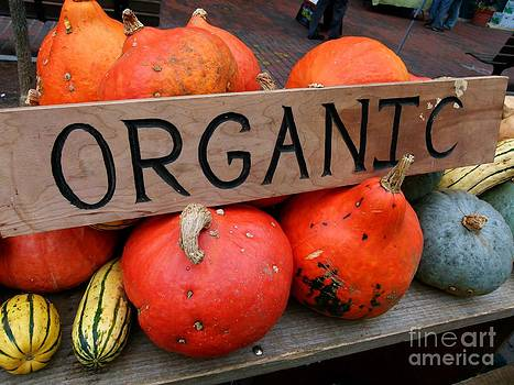 Christine Stack - Organic Sign at The Farmers Market