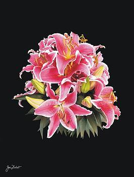 Joe Duket - Oriental Lily