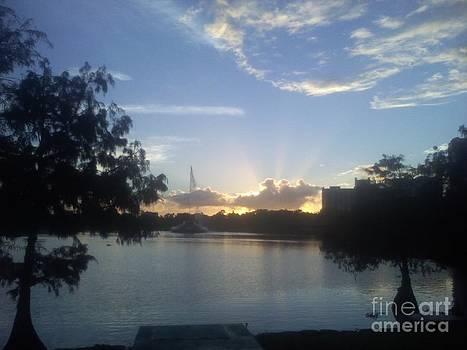 Orlando Florida by Vale Tek