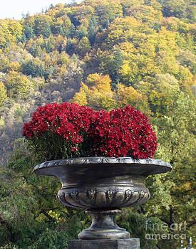 Ornamental Flowers in Stone Vase by Ioana Ciurariu