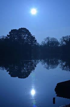 Ornamental lake by Paulo Simao