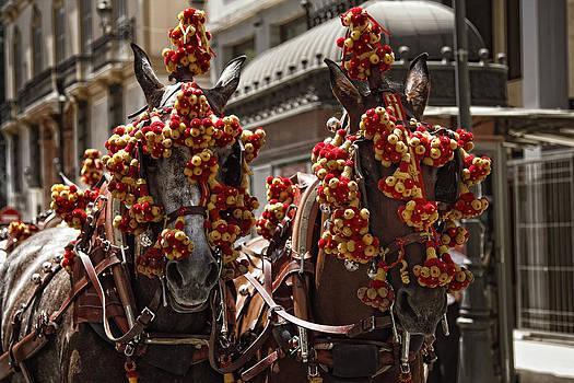 Ornamented horses by Goyo Ambrosio