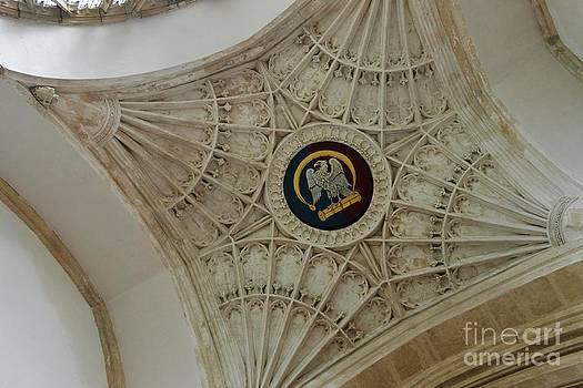 Ornate Ceiling by Stephanie Guinn