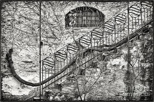 Silvia Ganora - Ornate stairs