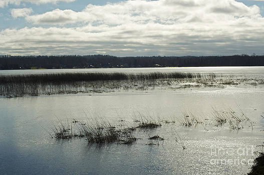 Elaine Mikkelstrup - Orr Lake Frozen Morning