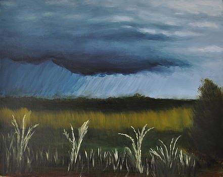 Osage Prairie Storm by John Moody