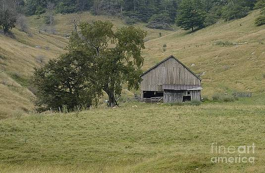 Osceola Barn by Randy Bodkins