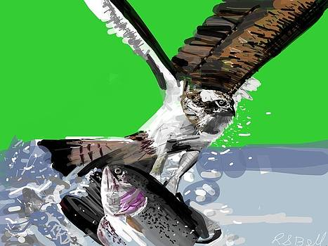 Osprey Snatches Trout by Randy Bell