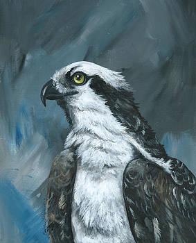 Osprey's Storm by Christine StPierre