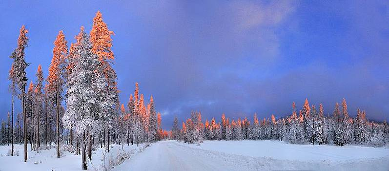 Other Side of a Winter Sunset by David Andersen