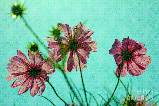 Beverly Claire Kaiya - Otherworldly Cosmos Flowers in Pink and Green