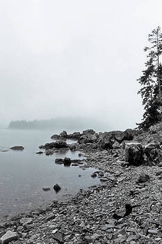 Joann Vitali - Otter Cliffs