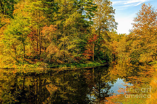 Otter Lake in the Fall by Mark East