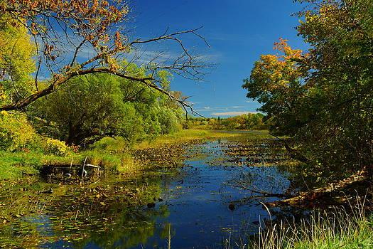 Ottertail River by Jann Kline