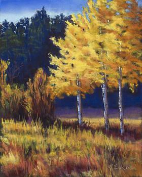 Our Brilliant Fall by Marjie Eakin-Petty