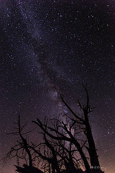 Our Galaxy by Bill Cantey