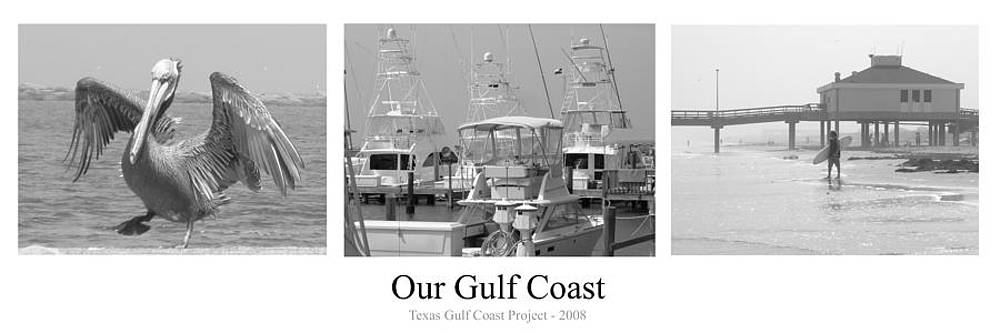 Our Gulf Coast by Michael Davis