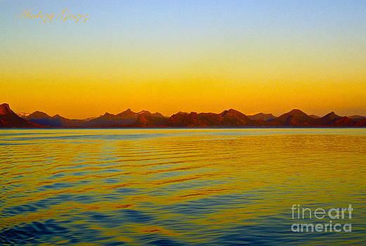 Our Wonderful World - Lofoten - Norway  by Andrzej Goszcz. by  Andrzej Goszcz
