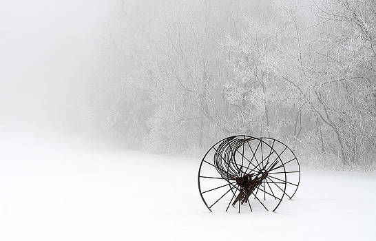 Out of the Mist a Forgotten Era by Greg Reed