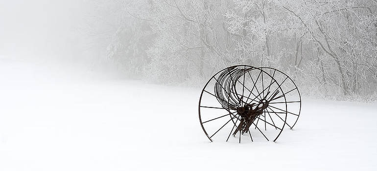 Out of the Mist a Forgotten Era II by Greg Reed